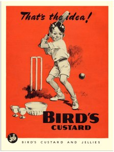 AP997-birds-custard-boy-playing-cricket